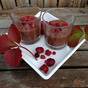 Quick Raw Chia Dessert by The Reluctant Raw Foodist
