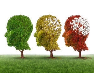Memory loss can be devastating  - Food for thought?