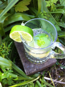 Lime and ginger tea