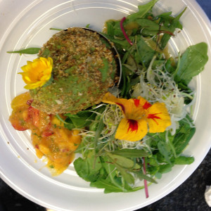 Creating my lunch on a Wild Food Cafe course